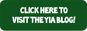 Visit The YIA Blog